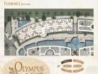 Olympus City Garden - 楼层平面图 - 2